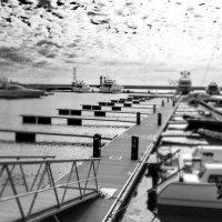 в порту :: Олеся Семенова