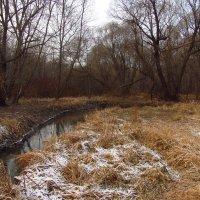 IMG_6107 - Дни до зимы не собьетесь считать :: Андрей Лукьянов