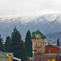 Ноябрь со снегом :: Наталья Джикидзе (Берёзина)