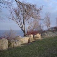 На берегу оз. Онтарио, апрель.... :: Юрий Поляков