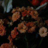 Корзинка с цветами :: Валерия Лидерман