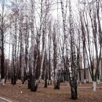 Осенний парк :: Анатолий Бугаев