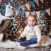 Новогоднее фото :: Ксения kd-photo