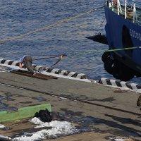 Силач Иван Савкин устанавливает новый рекорд России, протащив морской паром весом свыше тысячи тонн :: Александр Коряковцев