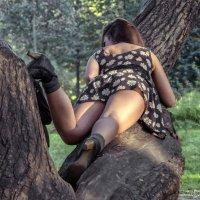 Трудно изобразить белку на дереве :: Valeriy Piterskiy