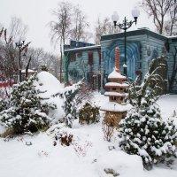 Зимний сад 2. :: Семён Пензев