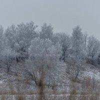 как  холодно зимой... :: Алексей -
