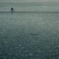 На льду :: Денис Разумовский