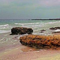 предзимний пляж :: Александр Корчемный