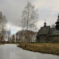 Поздняя осень :: Дмитрий Близнюченко