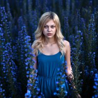blue flovers :: Dasha Neyman