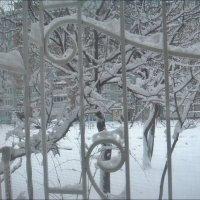 Здравствуй, зима! :: Нина Корешкова
