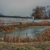 Монастырский пруд... :: марк