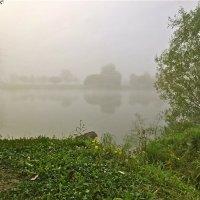 утренний туман :: Елена
