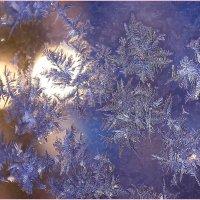 Взгляд зимы :: Татьяна Ломтева