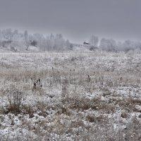 про зиму :: Алексей -