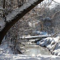 Мостик через ручей... :: Тамара (st.tamara)