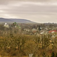 Олеський замок. вид с холма :: Наталия Рой