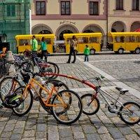 Разные бывают велосипеды :: Ольга Маркова