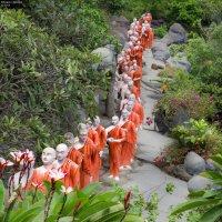 Монахи у храма Зуба Будды в Дамбулле. :: Edward J.Berelet