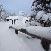 Snow day :: Сергей Давыдов