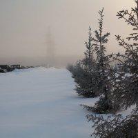 Морозный туман :: Алексей Астапенко