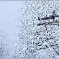 Вести о зиме :: Валерий Талашов