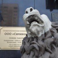Беззубый лев :: Svetlana27