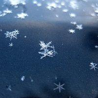 снежинки... :: Ольга Cоломатина