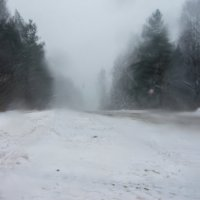 Слабый снег. :: Яков Реймер
