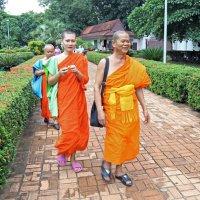 Лаос. Вьентьян. Такие разные монахи :: Владимир Шибинский