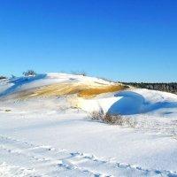 Мороз и солнце... :: Сергей Петров