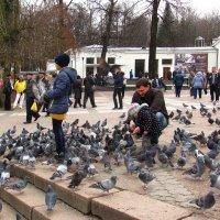 Бювет и голуби :: super-krokus.tur ( Наталья )