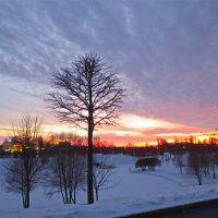 закат в декабре :: Елена
