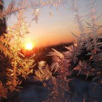 Рисунки на окне :: Angelika Faustova