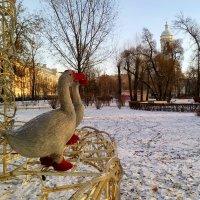 Рождественские гуси :: Наталья Левина