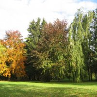 Всё тот же уголок нашего парка :: laana laadas