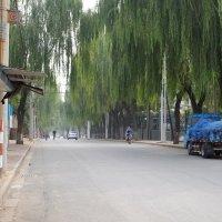 Где-то в глубине Китая :: Сергей Ткаченко