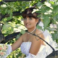 Самое здесь главное - это дубовые листья :: Дмитрий Конев