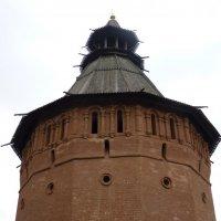 Башня  Спасо-Евфимиева  монастыря... :: Galina Leskova