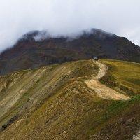 в горах :: Roman