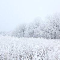 Русская зима :: Андрей Тер-Саркисов