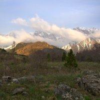 Ведь это наши горы.... :: Александр Грищенко
