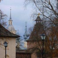 В Спасо-Евфимиевом  монастыре.... :: Galina Leskova