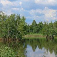 Белорусский пейзаж :: Юрий Мартинович