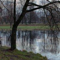 Мокрый лёд. :: Leonid Volodko