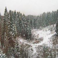 Октябрь, снег, Урал :: val-isaew2010 Валерий Исаев