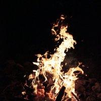 У ночного огня :: Андрей Сорокин