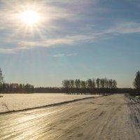 Мороз, солнце, гололёд :: Алексей Масалов