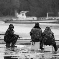 Рыбак рыбака... :: Артур Гоман
